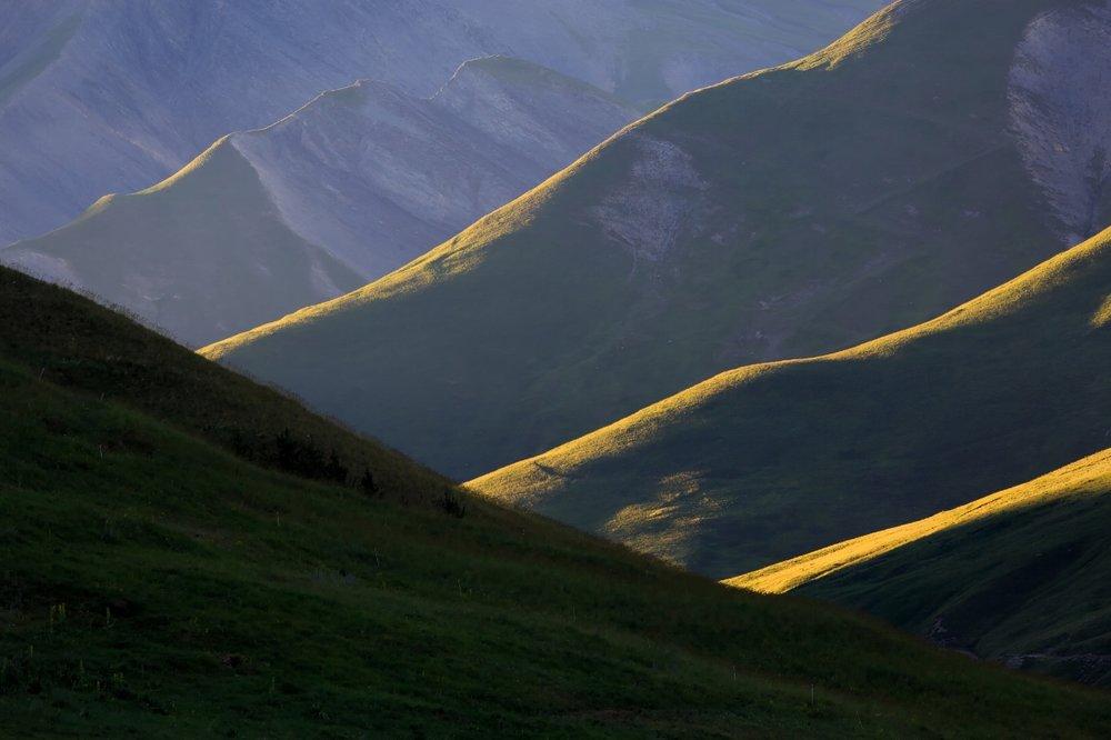 Au coucher de soleil, jeux d'ombres et de lumières sur les prairies encore vertes du mois de juin