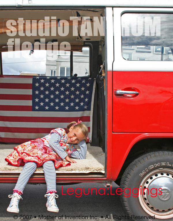 VW_bus1_sm.jpg