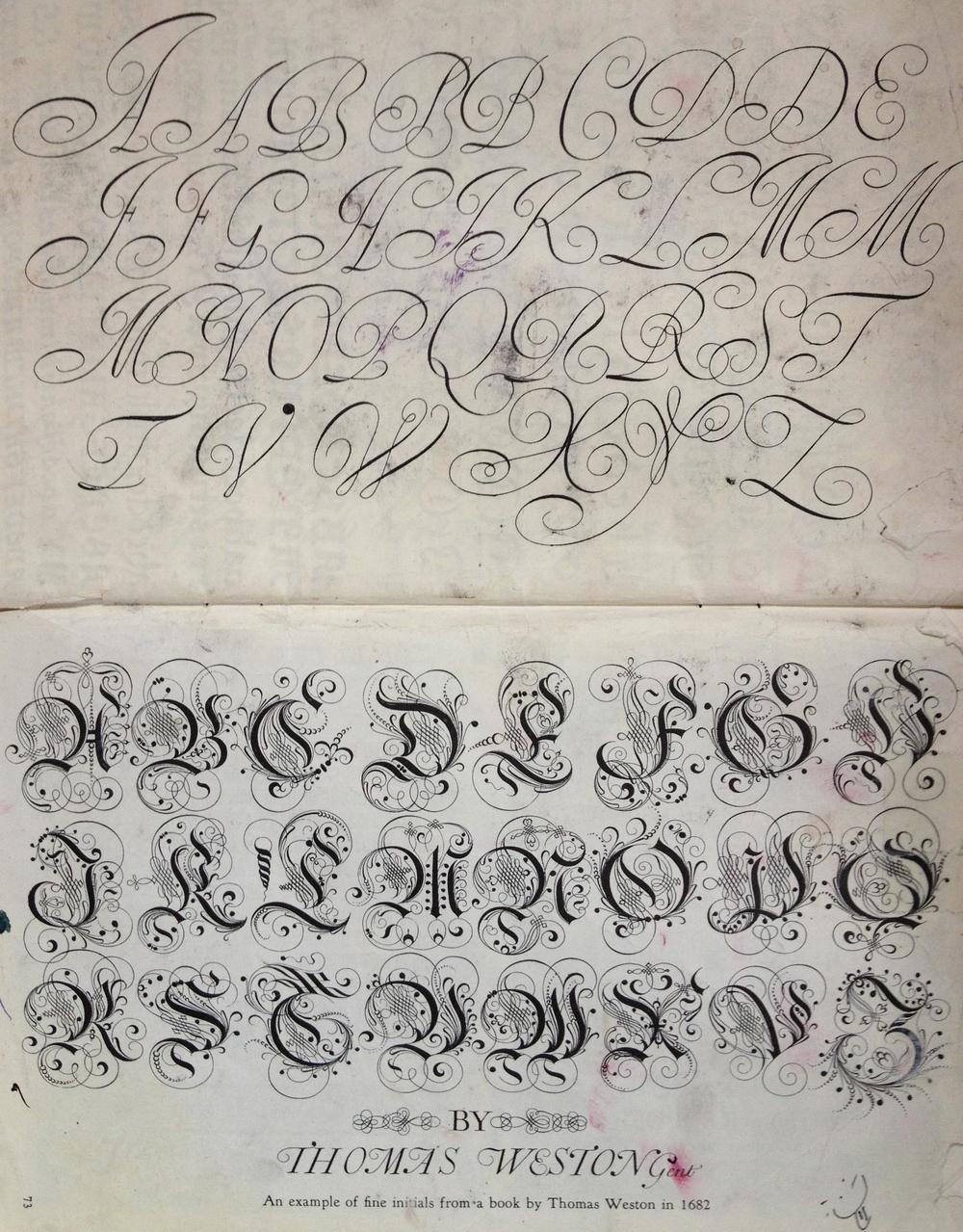 Calligraphy.jp.jpg