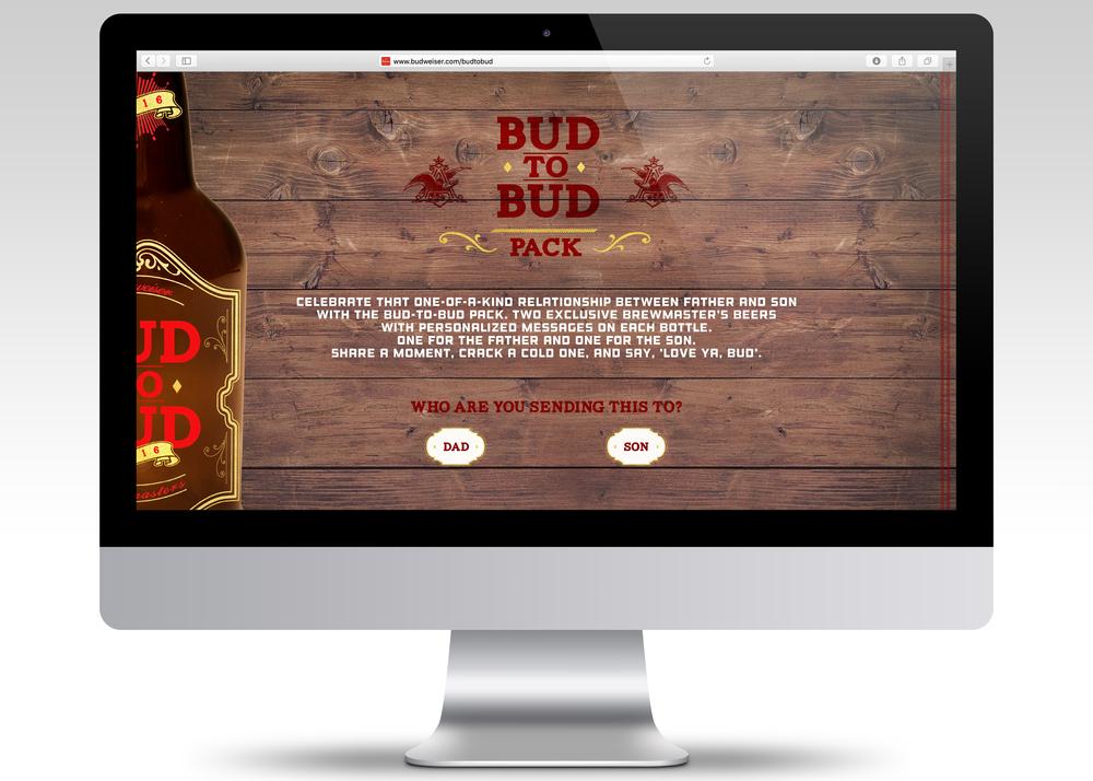 Bud_IntroPage.jpg