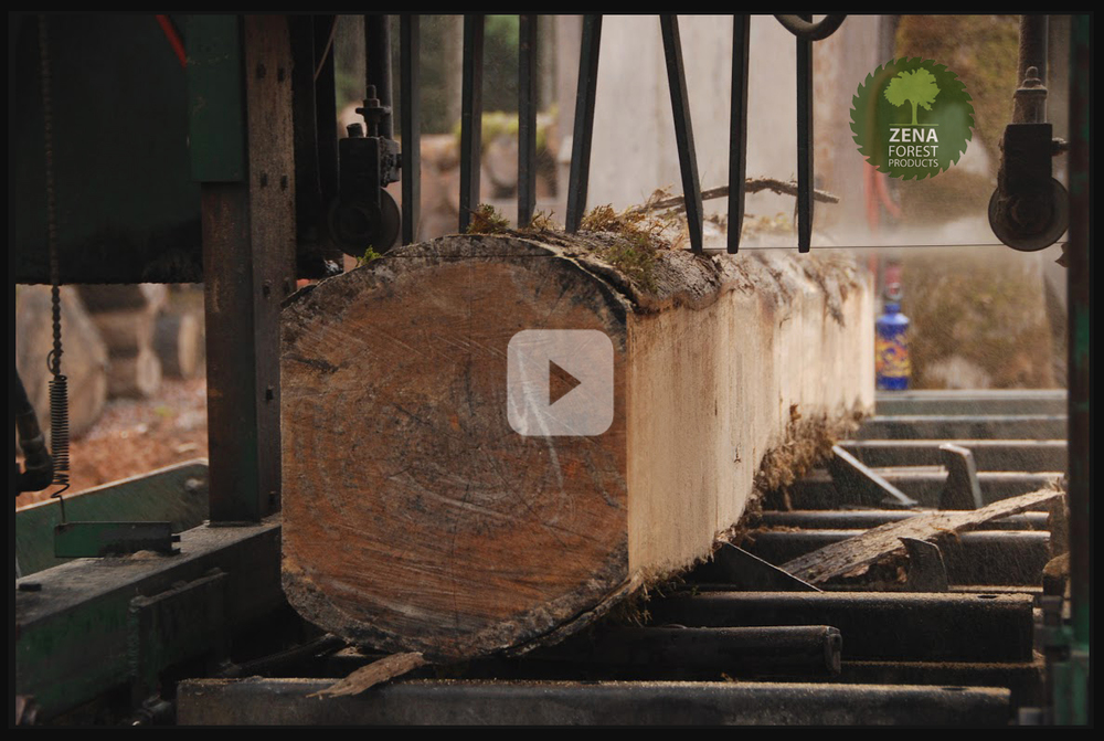 The Zena Forest Products Story