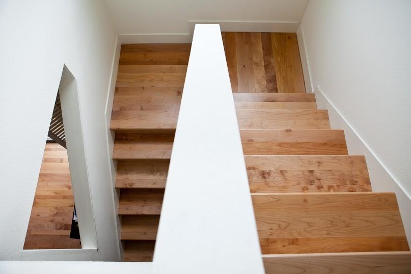 A birds-eye view of Zena's bigleaf maple stairs.