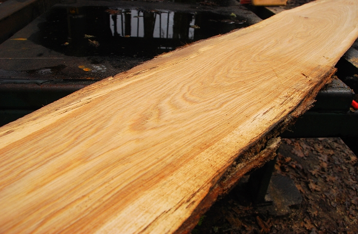 Flatsawn Oak.JPG
