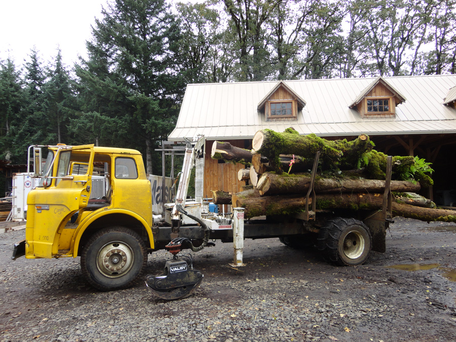 Kristin's logs on their way to be milled