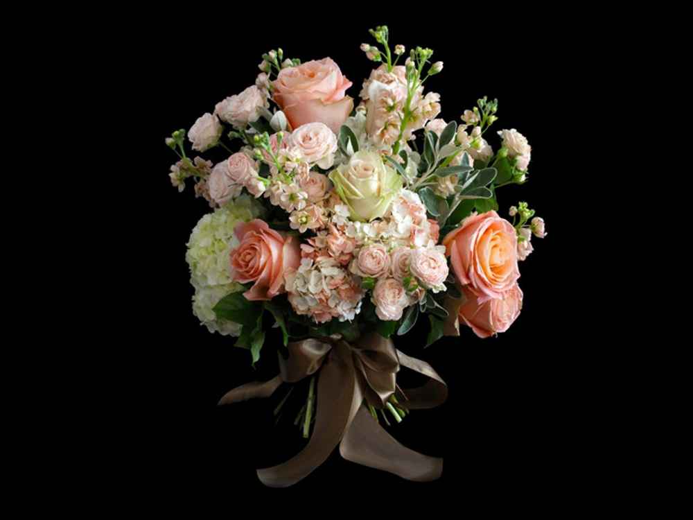 Absolute Flowers by Hayley Newstead.jpg