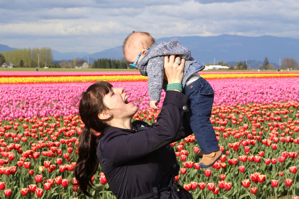 skagit valley tulip festival finding the extraordinary in the