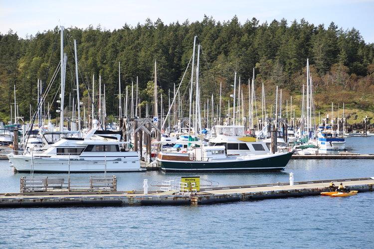 Friday Harbor Washington  Lisette Wolter-McKinley