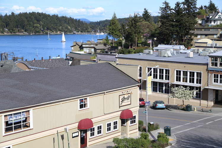 View from Friday Harbor's Bird Rock Hotel  Lisette Wolter-McKinley