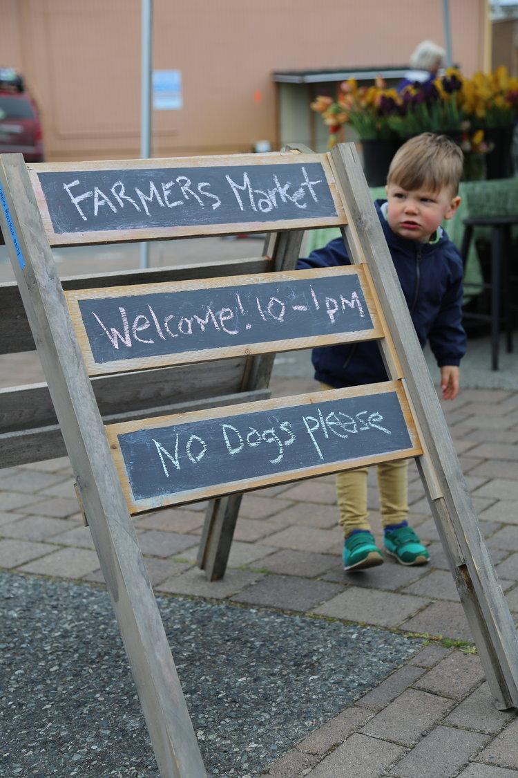 Bring your kids to Friday Harbor's Farmer's Market  Lisette Wolter-McKinley