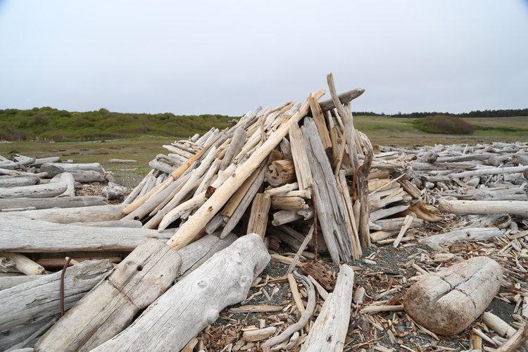 Driftwood fort on South Beach San Juan Island  Lisette Wolter-McKinley
