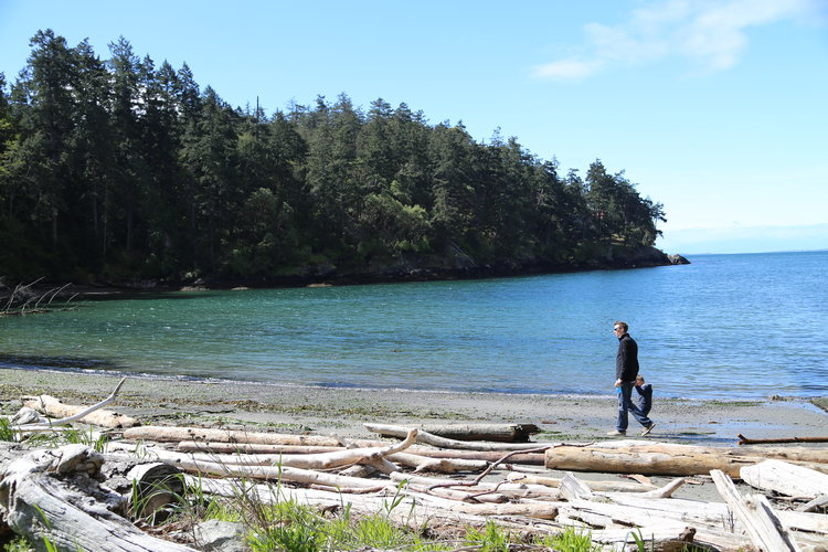 San Juan Island's beaches are perfect for long walks and beach combing  Lisette Wolter-McKinley