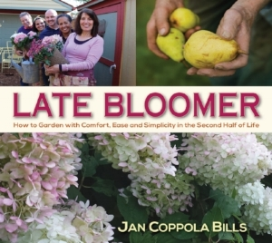 Late Bloomer Cover.jpg