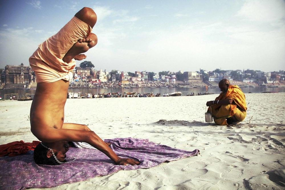 yogi 5149.jpg