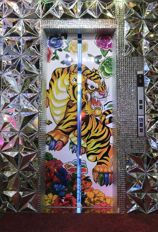 Elevator Tiger.jpg