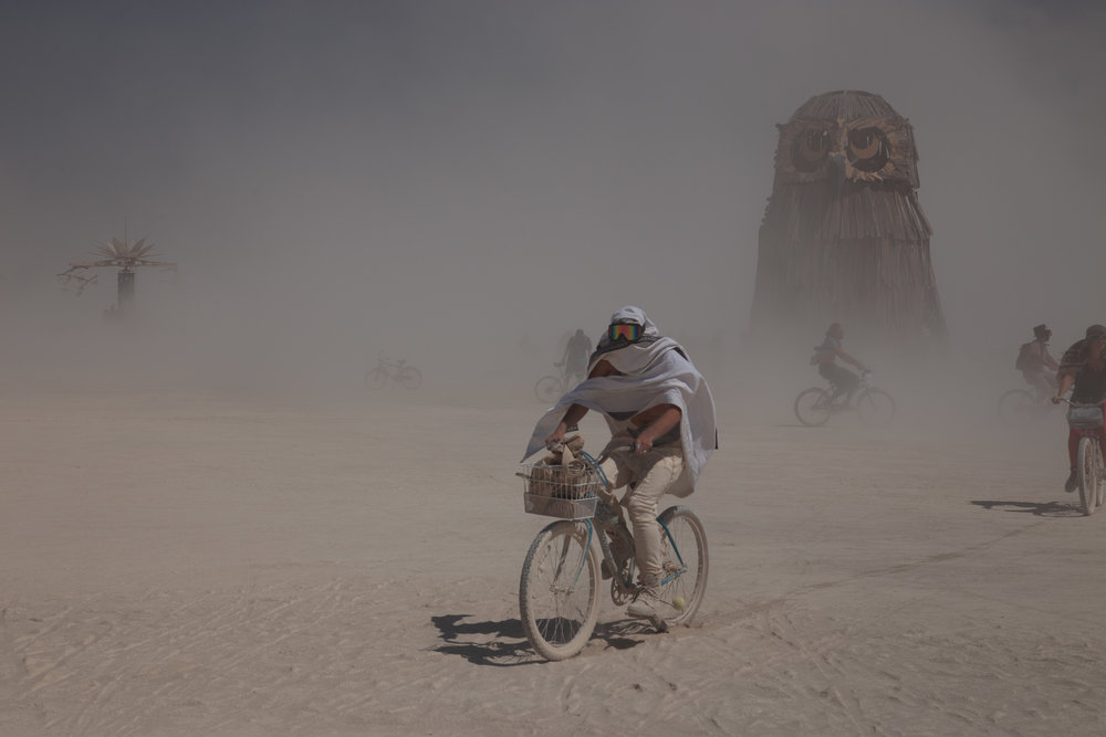 Owl and biker_0007.jpg