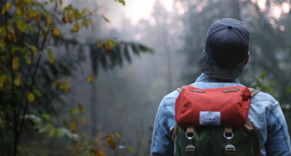 o51 FE TJ Forest web.jpg