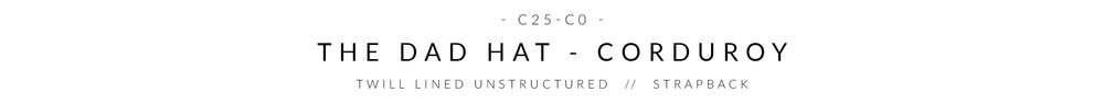 c25-CO WEB HEADER.jpg