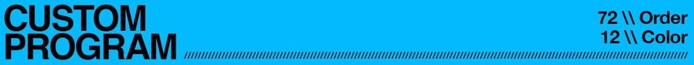 CUSTOM STYLE WEB HEADER 3-6wks.jpg