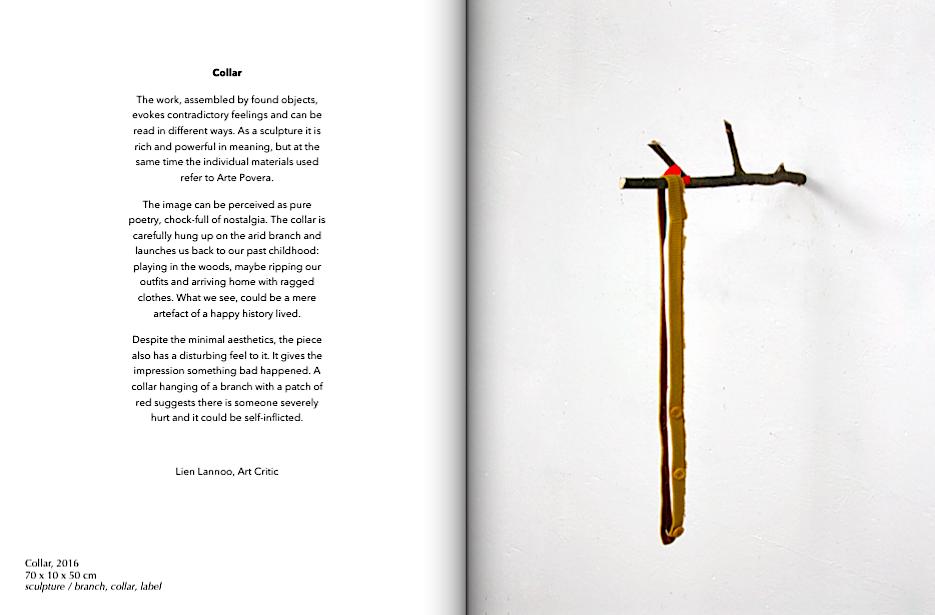 Collar' reviewed by art critic Lien Lannoo — Gert Scheerlinck
