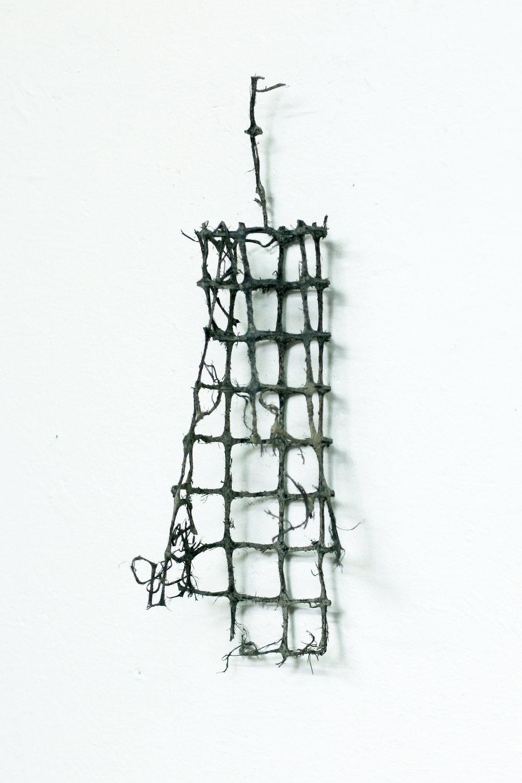 The Net.