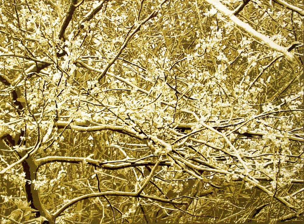 Suzanne Mann-Branches #2.jpeg.jpg
