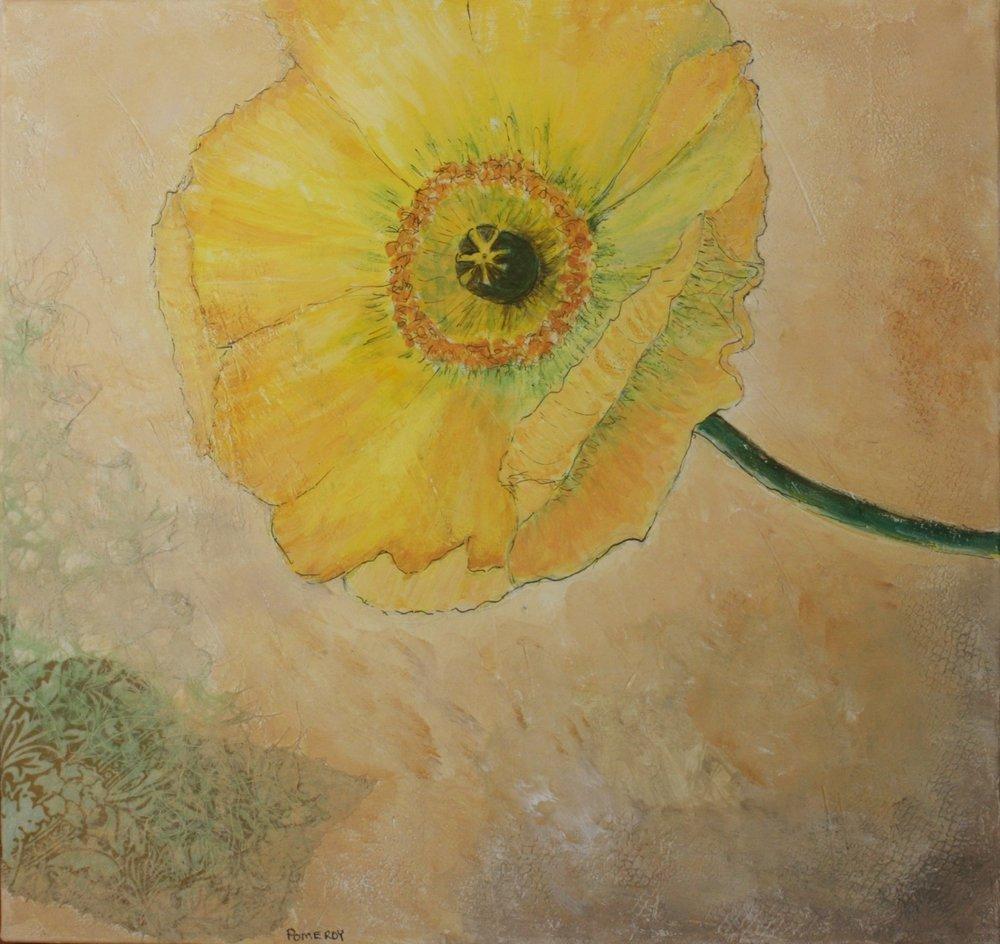 Jan Pomeroy: Yellow Poppy
