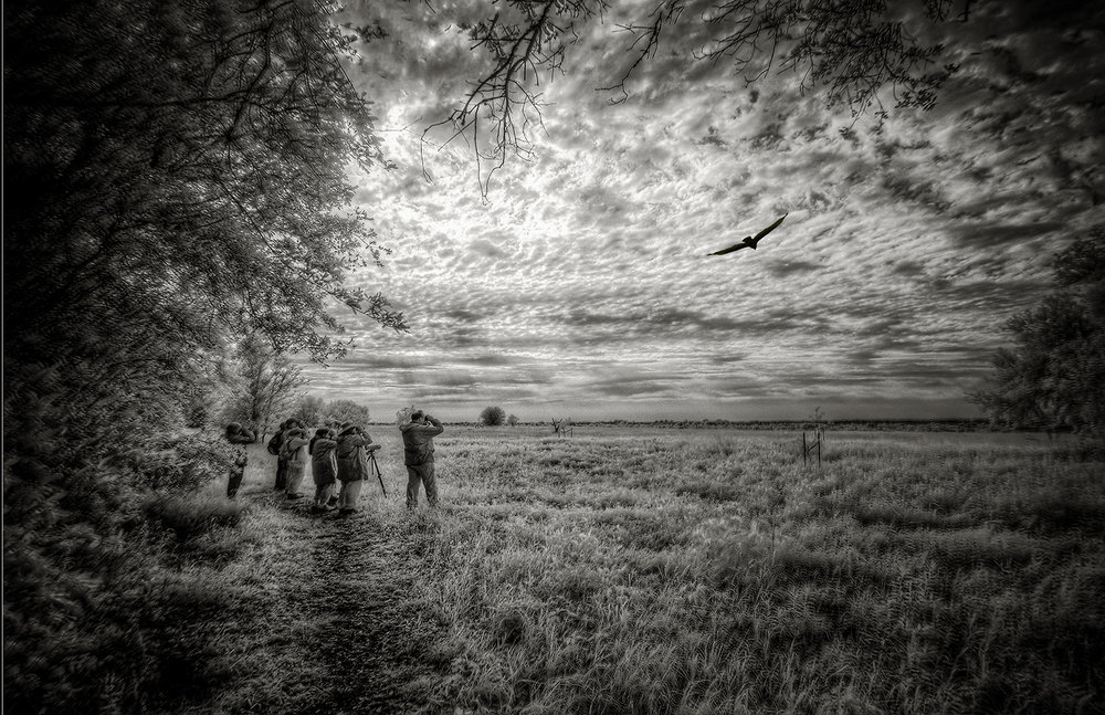 Pete Holland - Fine Art Photography