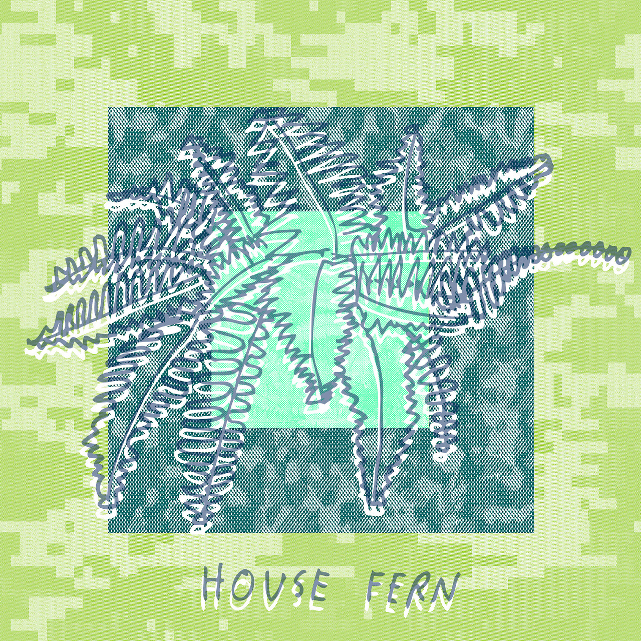 House Fern Draft 2