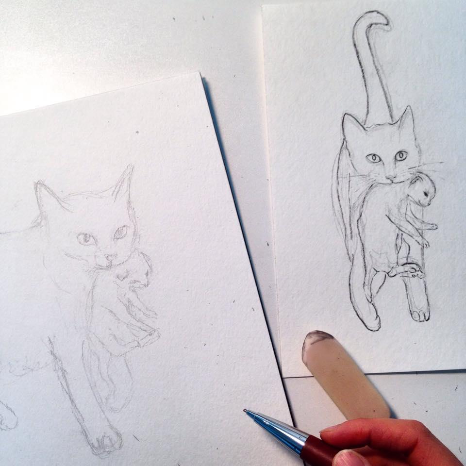 48_cats.jpg