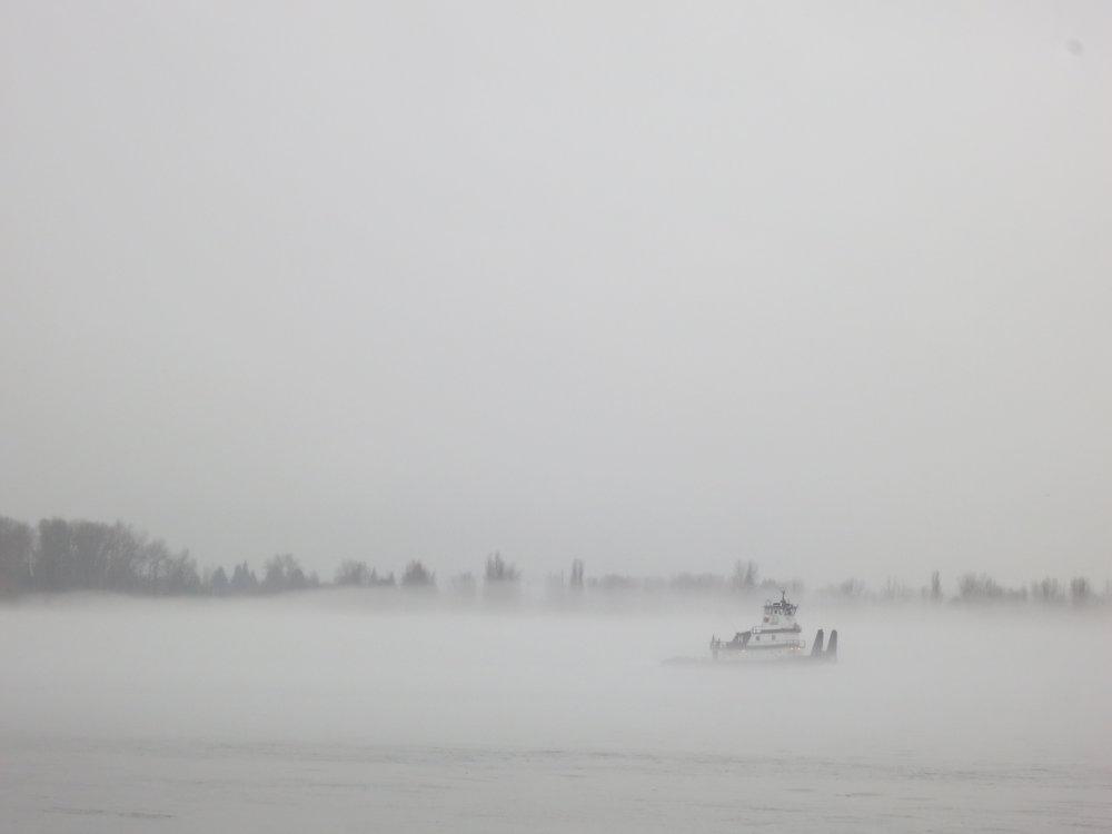 Limbo In The Pacific Northwest- NPIB