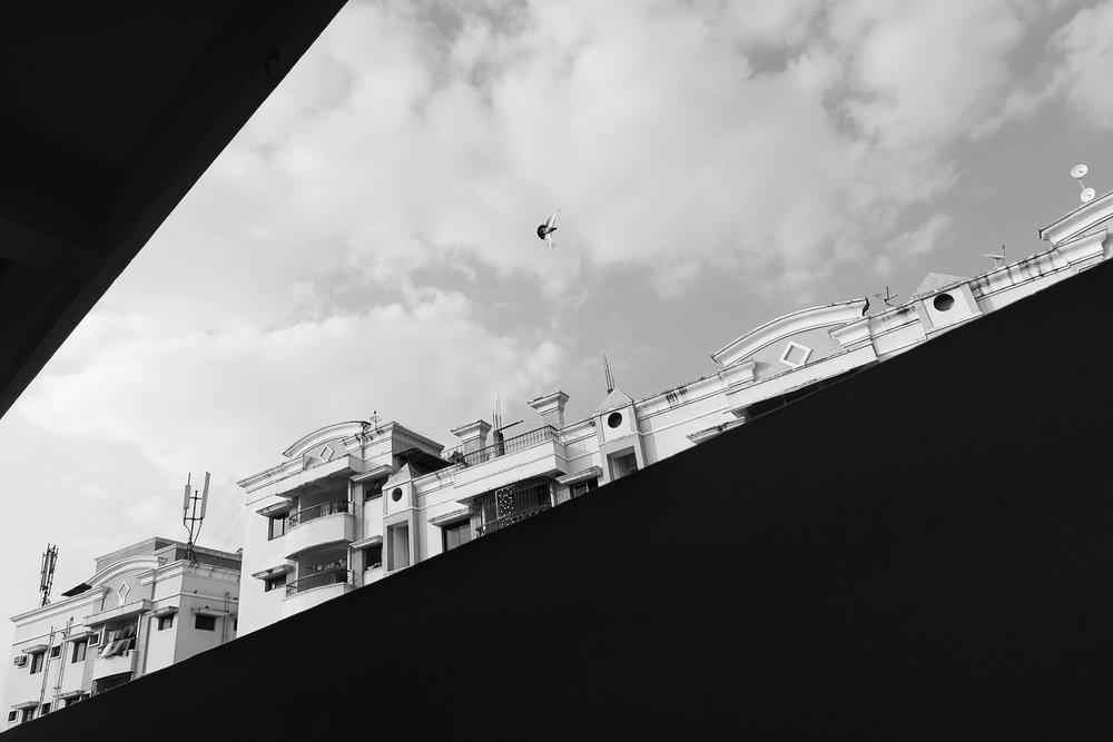Escape From Hyderabad- NPIB