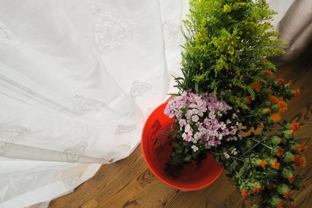 diy drying flowers