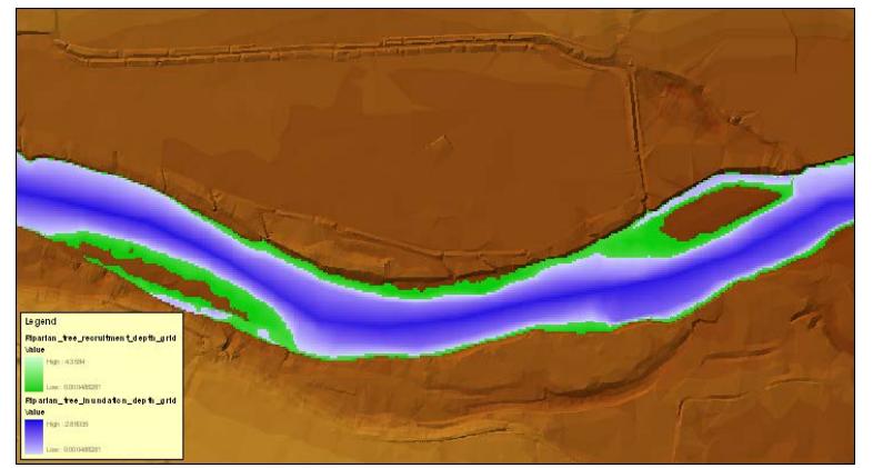 Modelo HEC-EFM predice recubrimiento de vegetación de ribera (capa verde) y pérdida de recubrimiento por inundación prolongada (capa azul)
