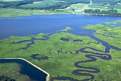 Figura 1. La Red de Información de la Bahía de Chesapeake desarrolló un portal ofreciendo una amplia variedad de recursos de Internet. Los usuarios pueden acceder a una biblioteca de información acerca de la cuenca, haciendo que su gestión sea más transparente.