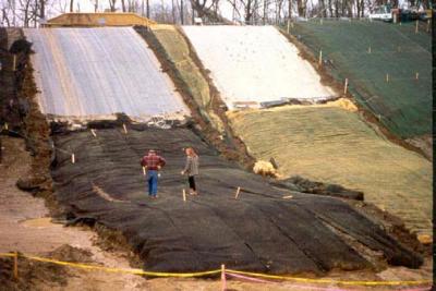 Imagen 1. Fotografía de diferentes sistemas de cobertura de suelos estudiados.