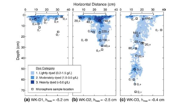 Figura2: Análisis de macroporos con técnicas de inyección de pintura. En la imagen se analizan tres sitios en los cuales la concentración y distribución de pintura fue diversa, mostrando la longitud, distribución y continuidad de macroporos