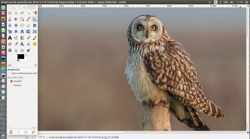 Entorno de GIMP en Ubuntu