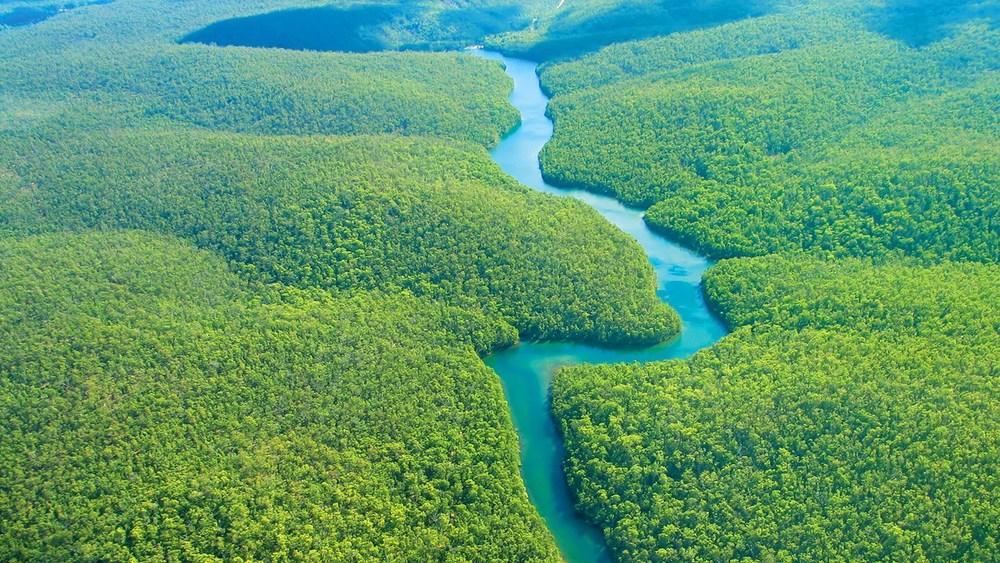 46192084ca8f Ley N°26821 - Ley orgánica para el aprovechamiento sostenible de los  recursos naturales en Perú