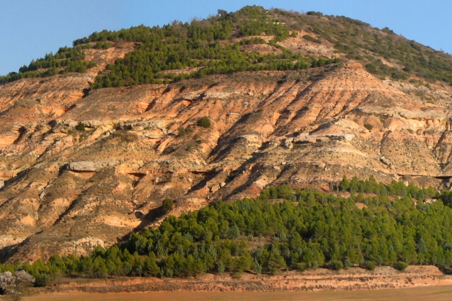 roca-sedimentaria.jpg