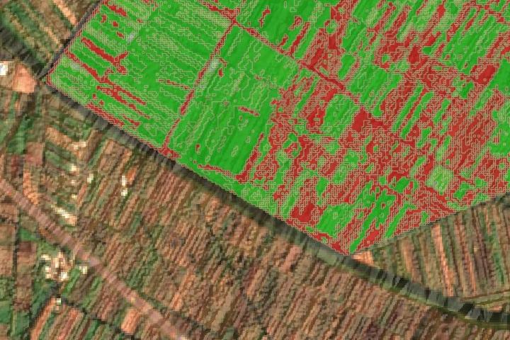 AgriculturaPrecision.jpg