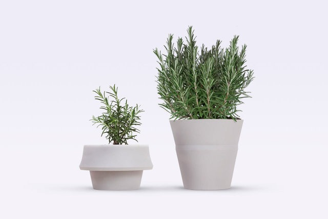 A Pot That Unfolds As Your Plant Grows