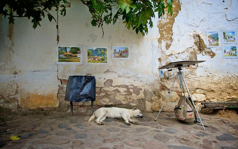 dog & artist