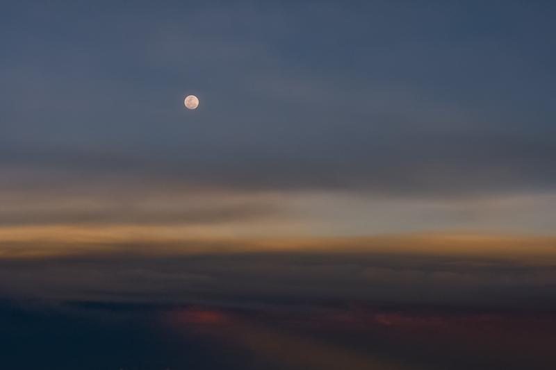 moon-high