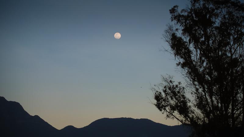 moon & chopper