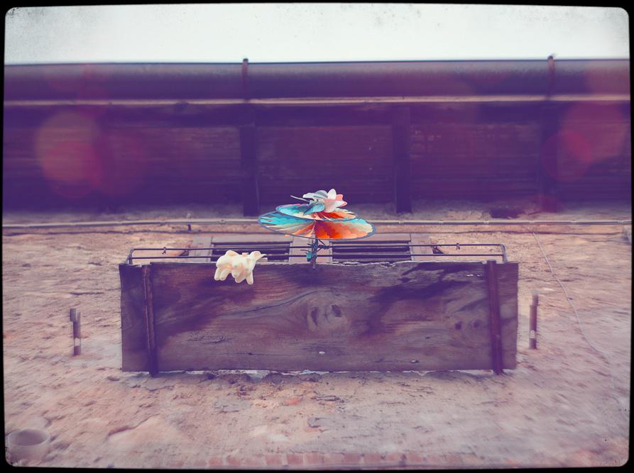 wind toy