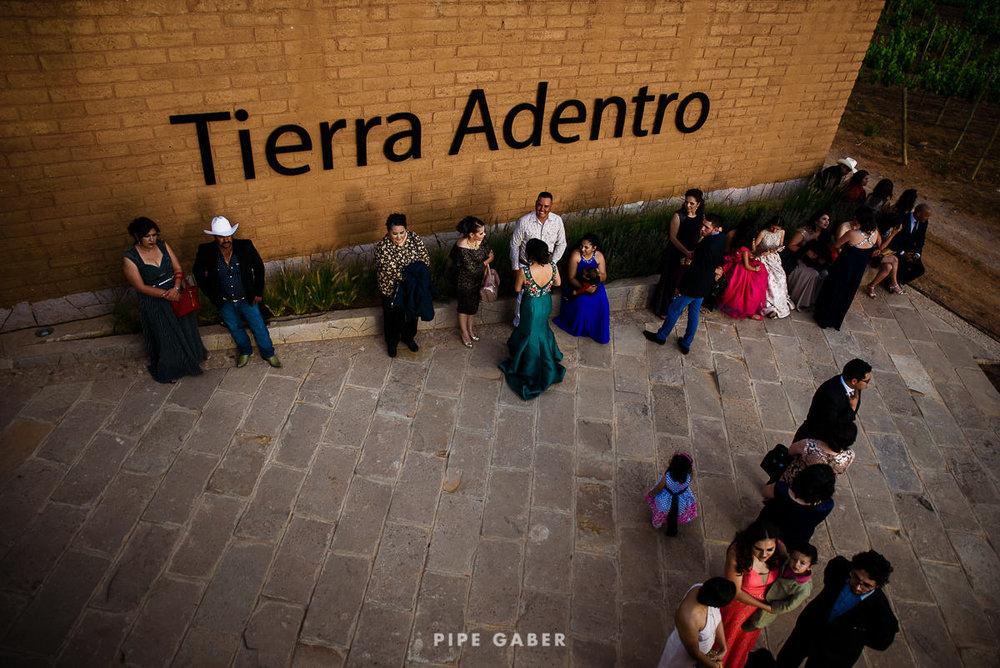 tierra_adentro_boda_zacatecas_viñedo_30.JPG