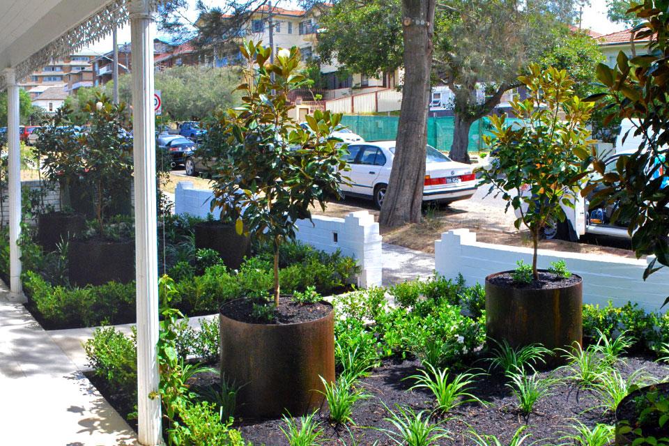 Bennett street bondi terraneo landscape design sydney for Landscape design sydney