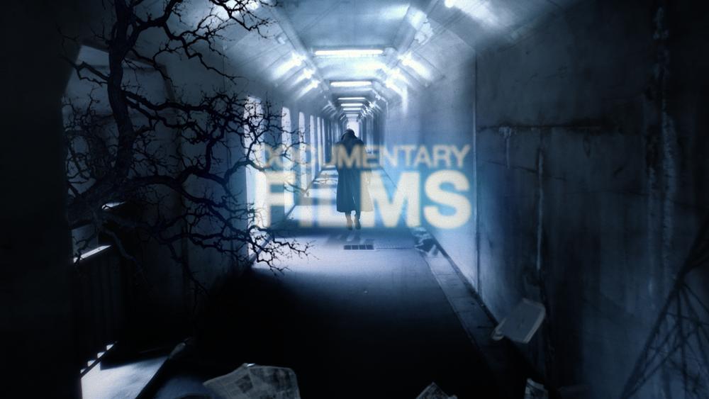 docFilms_2014_01.png