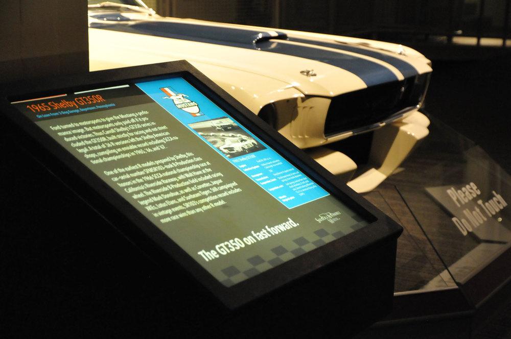 Mustang at 50162.jpg