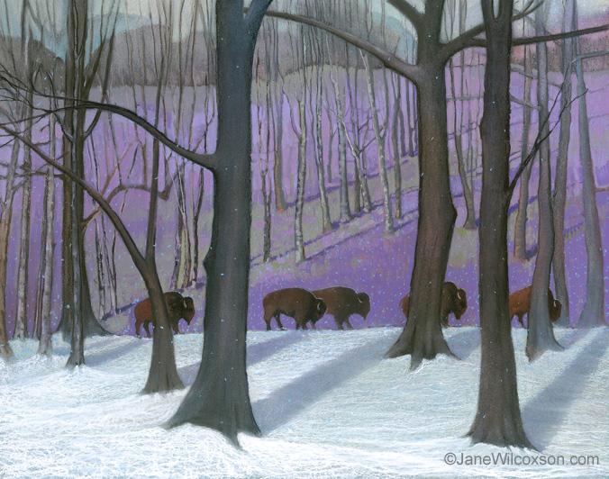 Buffalo-Snow-9880.jpg
